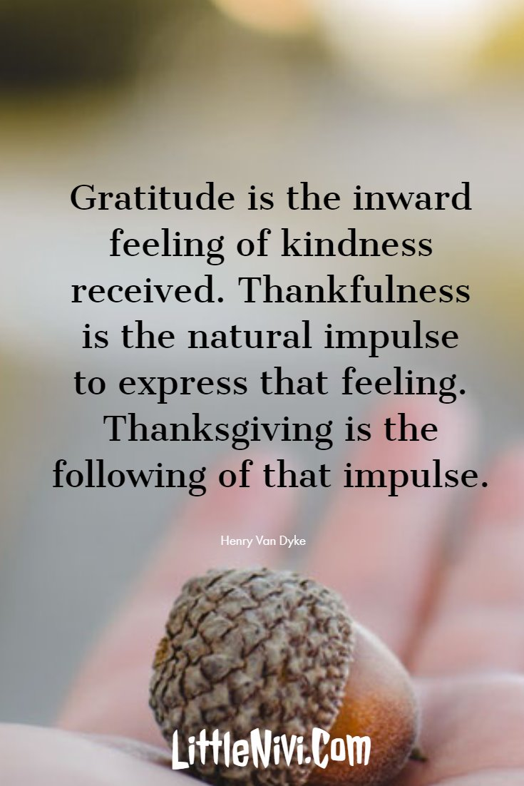 27 Inspiring Thanksgiving Quotes with Happy Images 17