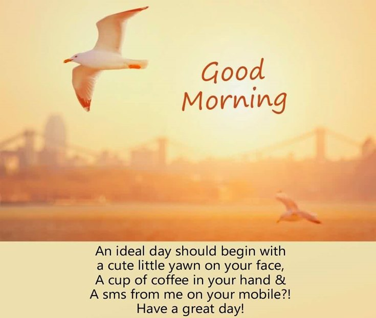 28 Amazing Good Morning Quotes and Wishes with Beautiful Images 2