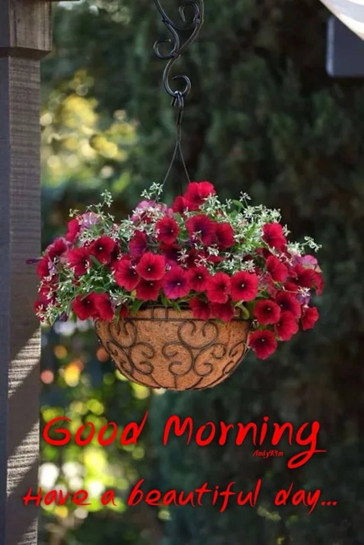 28 Amazing Good Morning Quotes and Wishes with Beautiful Images 20