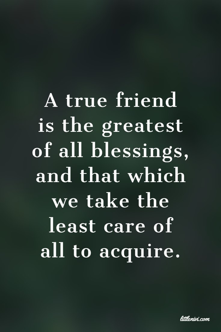 27 Friendship Quotes That You And Your Best Friends 15