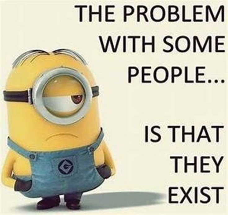 55 Funny Minion Quotes You Need to Read 15
