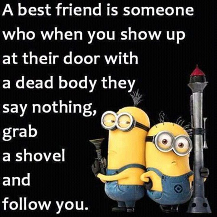 55 Funny Minion Quotes You Need to Read 19
