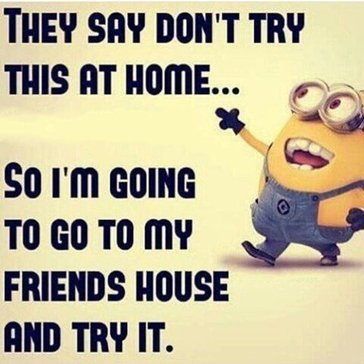 55 Funny Minion Quotes You Need to Read 22