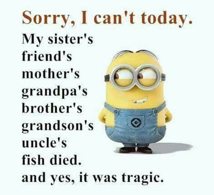 55 Funny Minion Quotes You Need to Read 31
