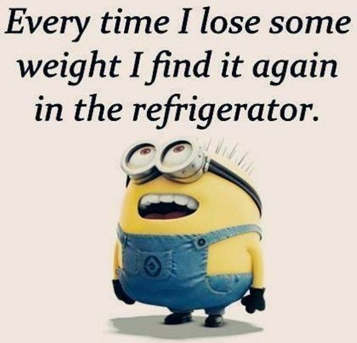 55 Funny Minion Quotes You Need to Read 36