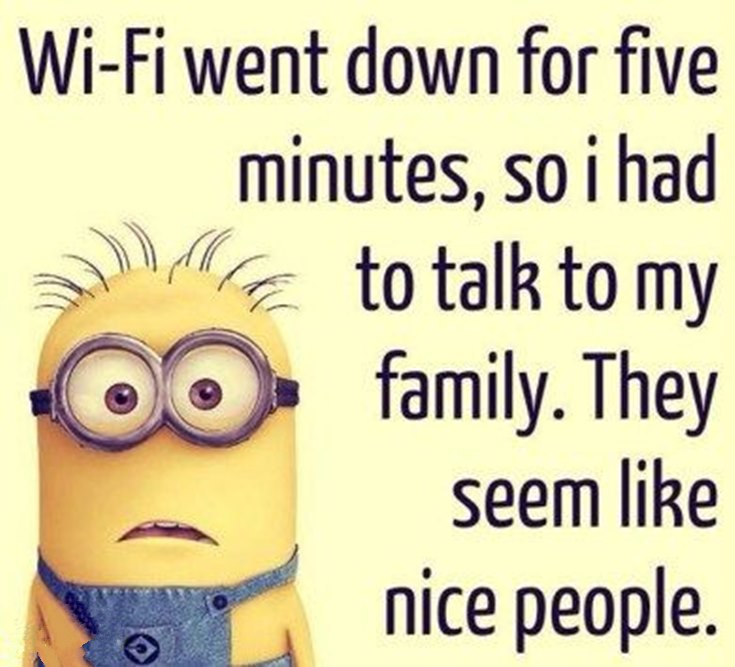 55 Funny Minion Quotes You Need to Read 37