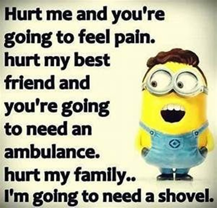 55 Funny Minion Quotes You Need to Read 44