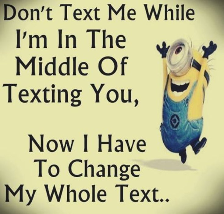 55 Funny Minion Quotes You Need to Read 49
