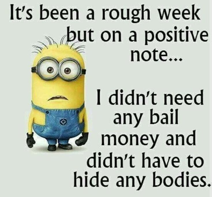 55 Funny Minion Quotes You Need to Read 6