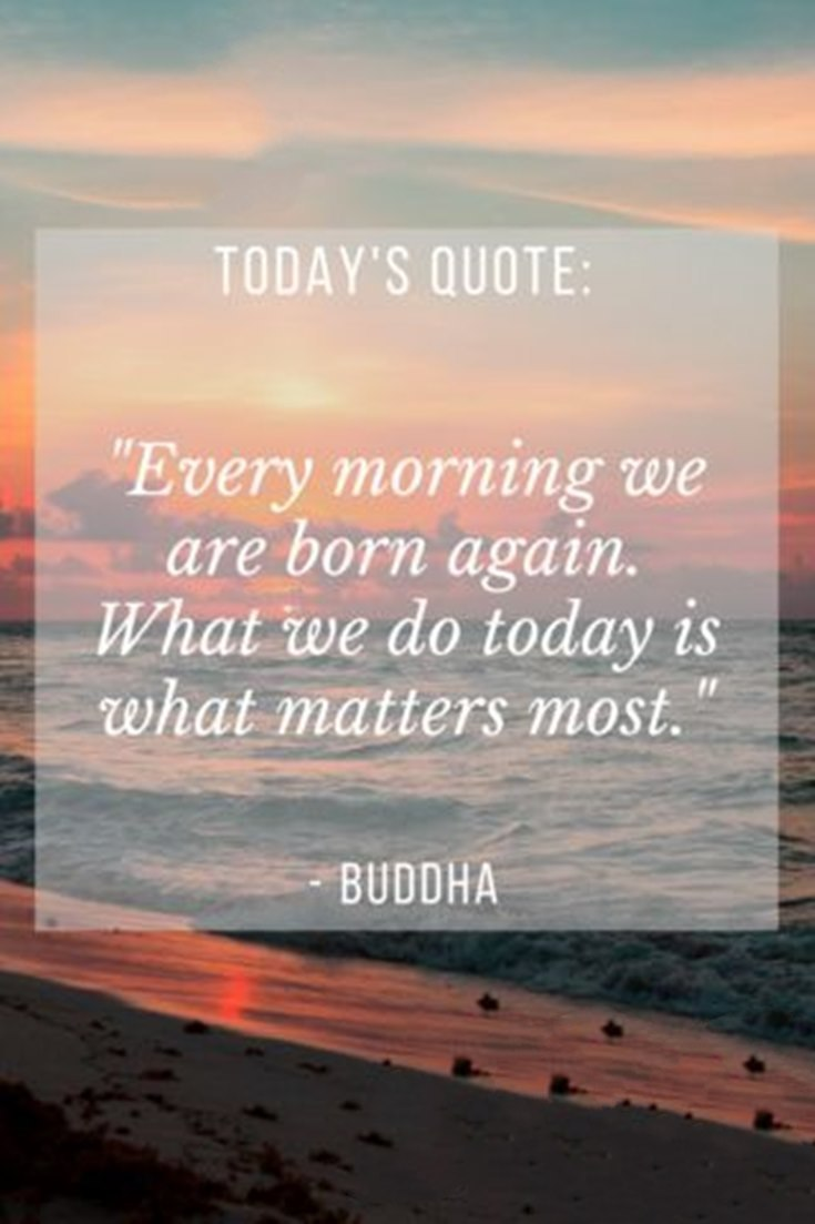 100 Inspirational Buddha Quotes And Sayings That Will Enlighten You 14