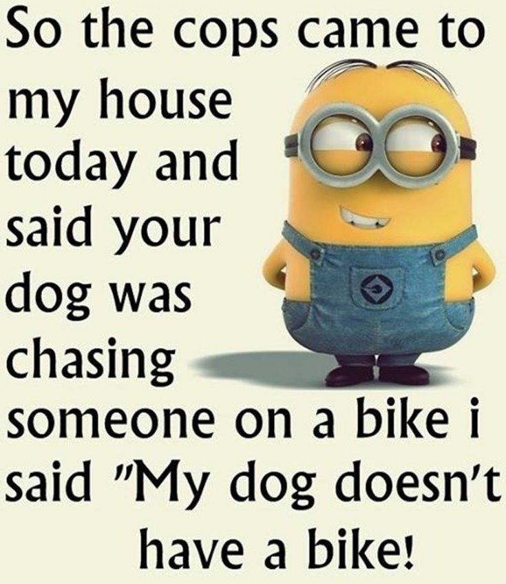 45 Funny Quotes Laughing So Hard and Hilarious Memes 22