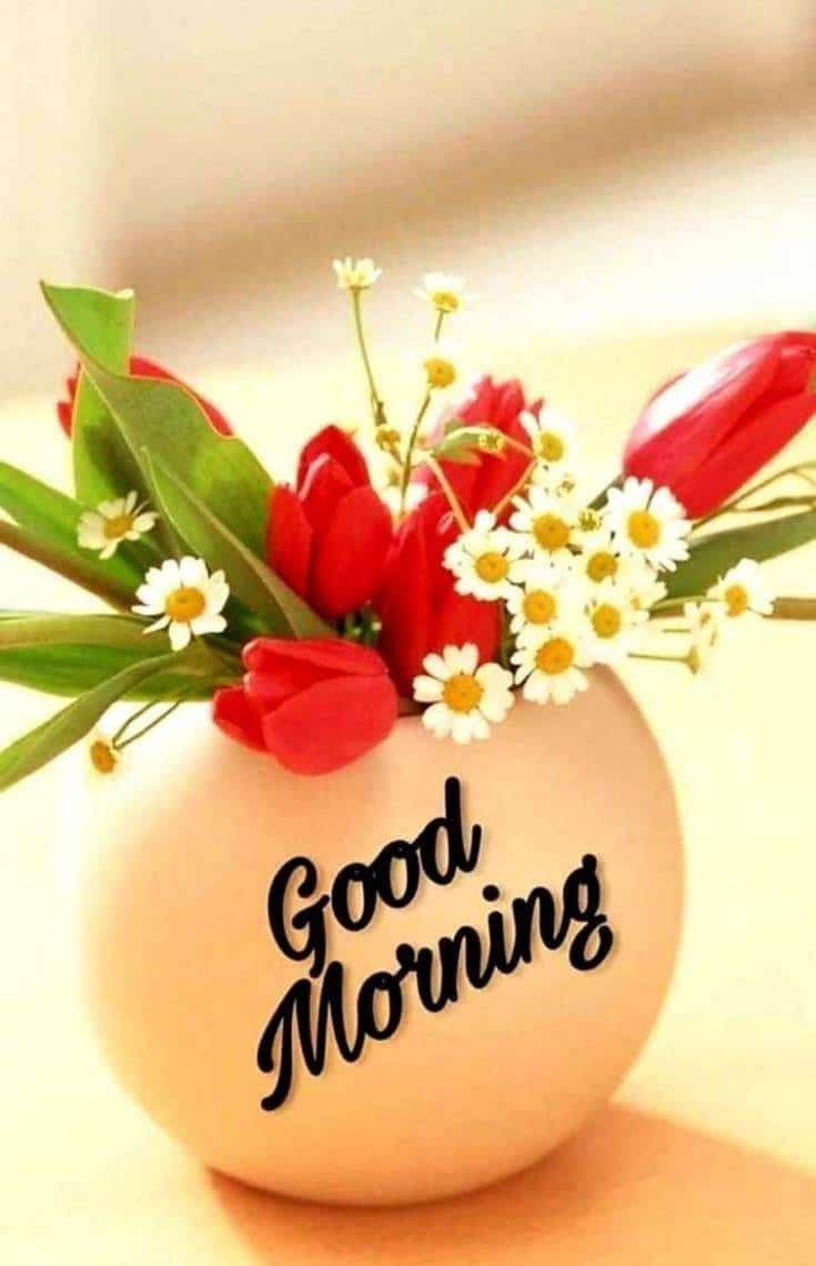 35 Amazing Good Morning Quotes and Wishes with Beautiful Images 8 #flowers images