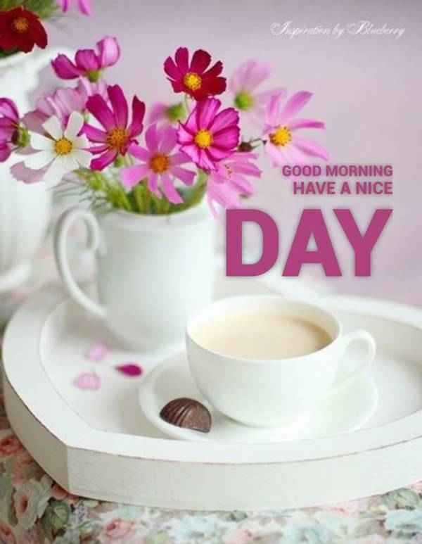 56 Good Morning Quotes and Wishes with Beautiful Images 25