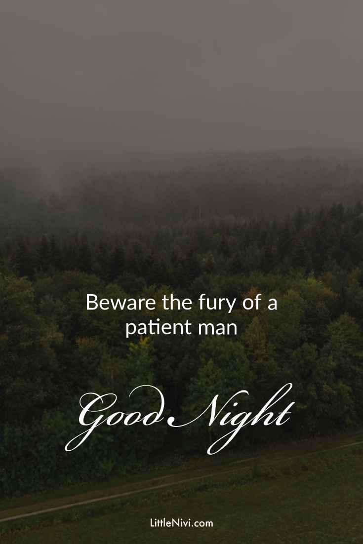 30 Amazing Good Night Quotes and Wishes with Beautiful Images 22