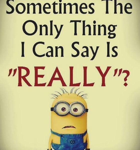 Best Minion quotes images 12