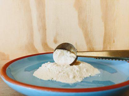 Onion Powder Organic
