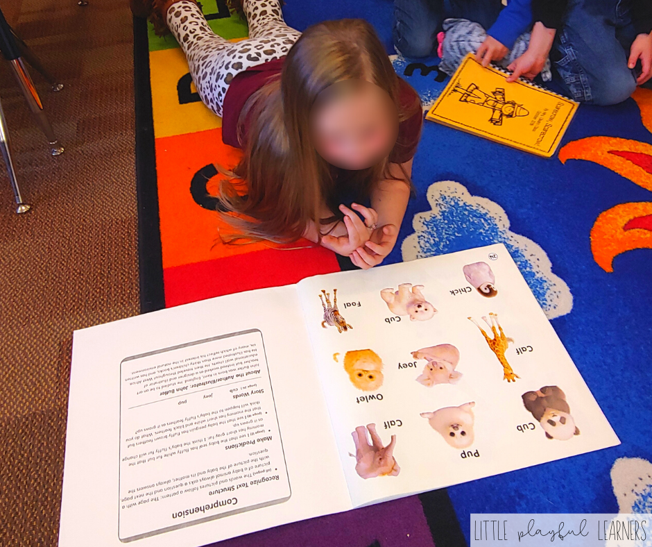 A kindergarten student who loves reading
