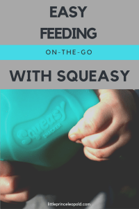 On the go snacks reusable squeeze pouch