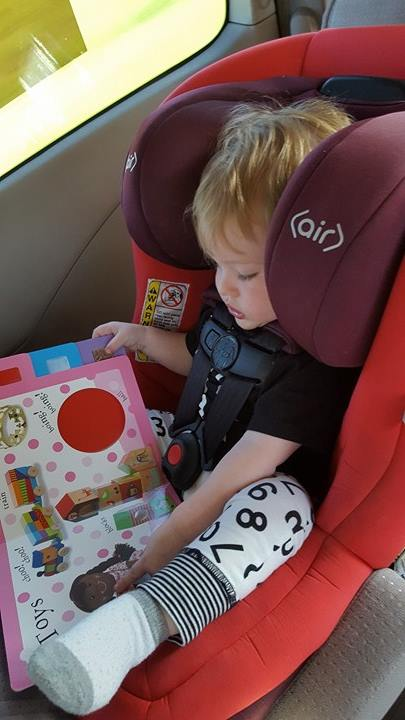 road trip books for toddler