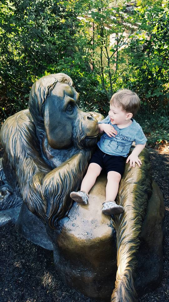 riverbanks zoo-travel guide-things to do in columbia sc-activities for toddlers in south carolina-
