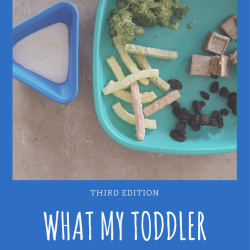 What My Toddler Ate This Week: Third Edition