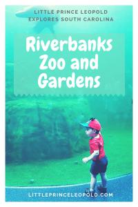 riverbanks zoo-travel guide-south carolina-columbia south carolina with kids-