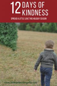 12 days of christmas-holidays-giving-empathy-love-childhood-