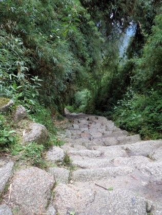 Inca Trail - About to hike down these flight of stairs.