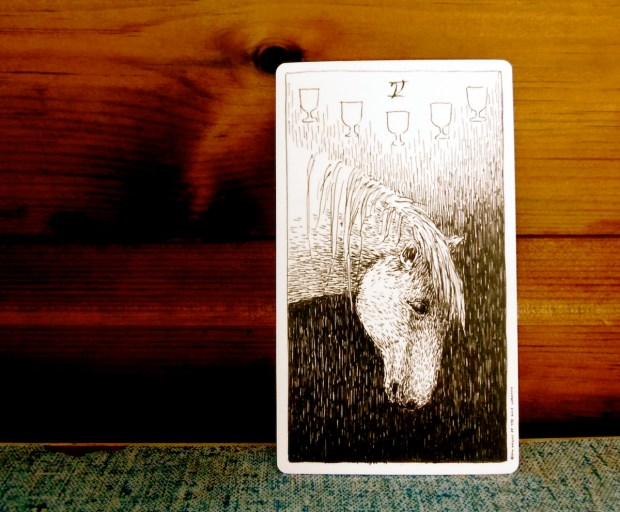 Five of Cups, from the Wild Unknown Tarot by Kim Krans