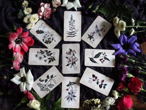 Pythia Botanica Oracle Deck
