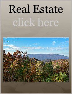 Smoky mountain cabin rentals