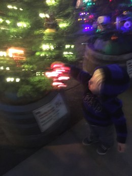 Asher trying to pull every ornament off the trees