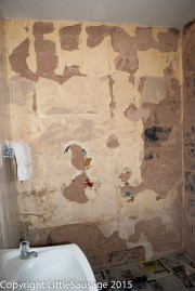 Making a start on removing the plaster.