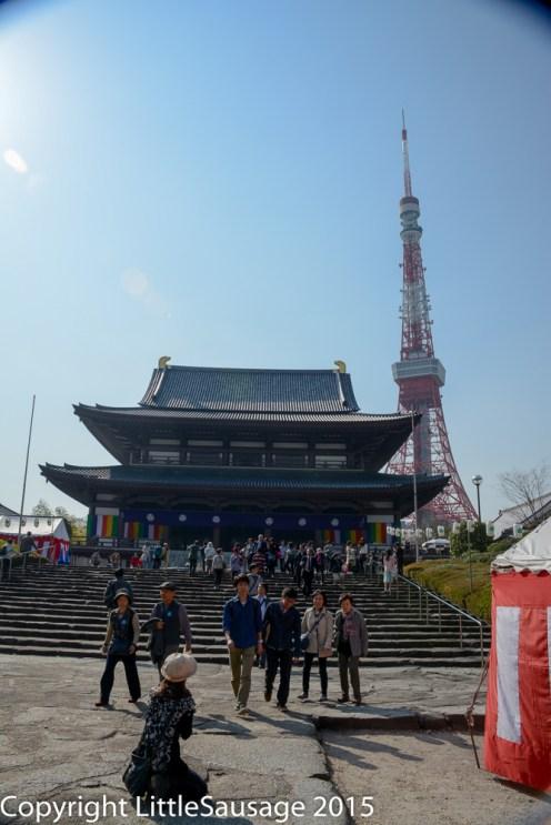 Tokyo Tower photobomb!