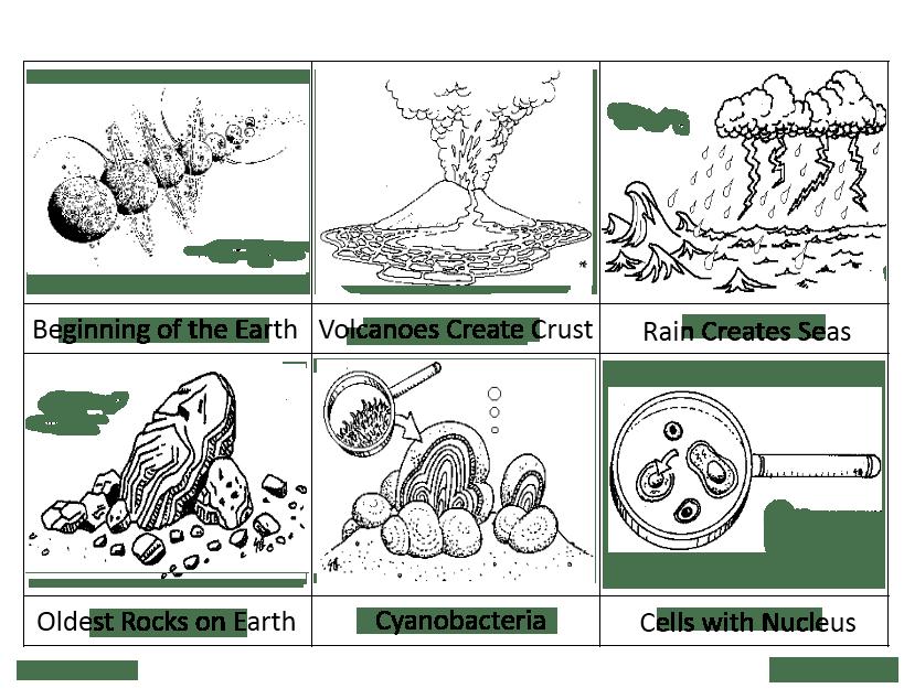1 pre cambrian - Montessori