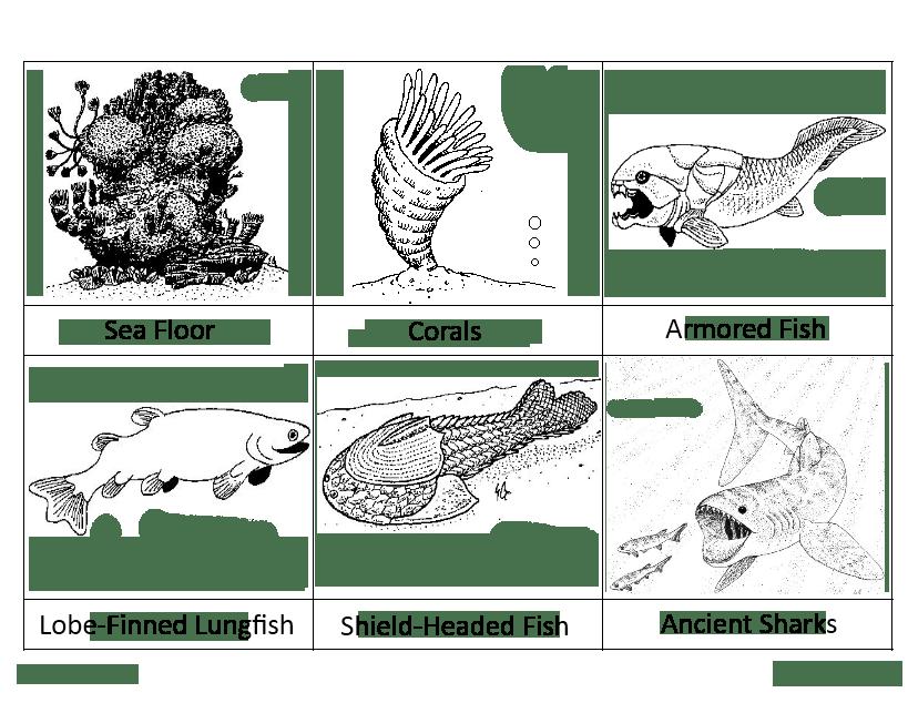 5devonian - Montessori
