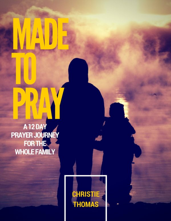 Made to pray: a 12-day prayer journey for the whole family
