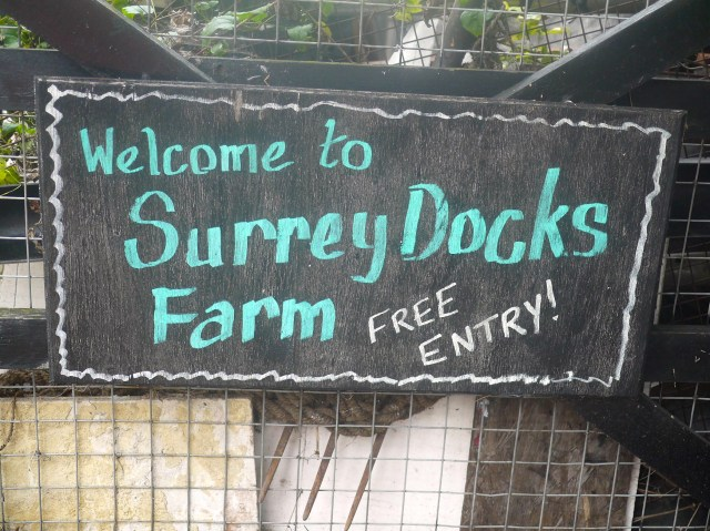 Surrey-Docks-Farm-with-HUGGIES-Pull-Ups