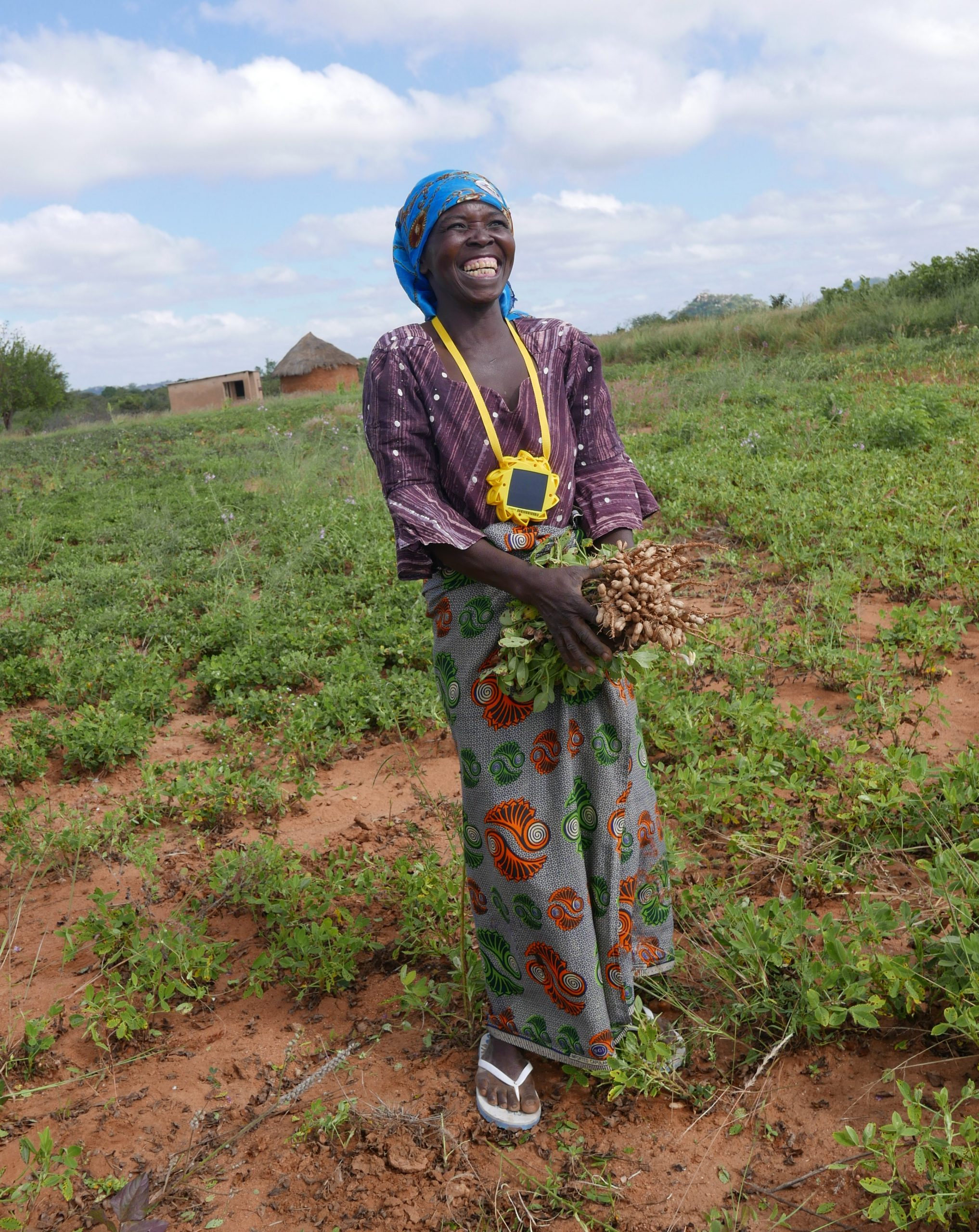 A women in Zimbabwe with a Little Sun solar lamp harvesting food