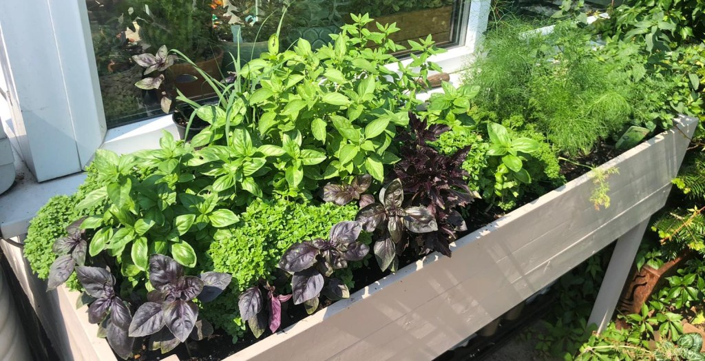How To Build A Raised Herb Planter, How To Build A Raised Herb Garden Planter