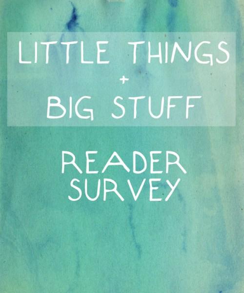 little things + big stuff blog reader survey