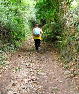 Hiking. Oooh my legs.