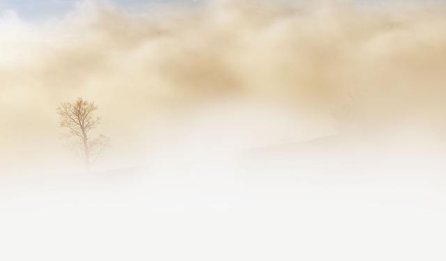 fog-240075_640