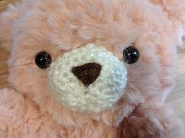 image of muzzle