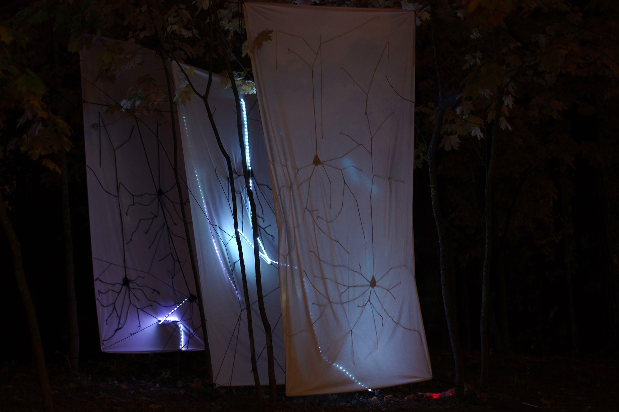 Neurogenesis Multimedia Art Installation