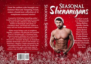 Seasonal Shenanigans print wrap