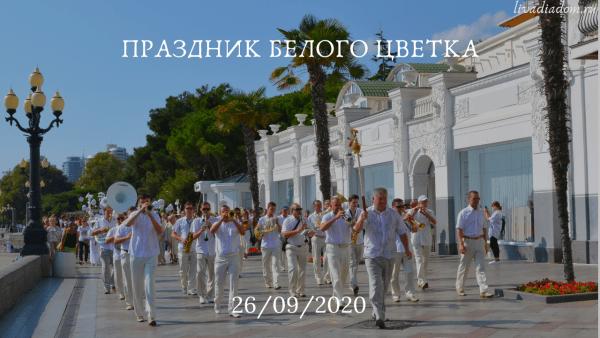 Белый цветок 2020