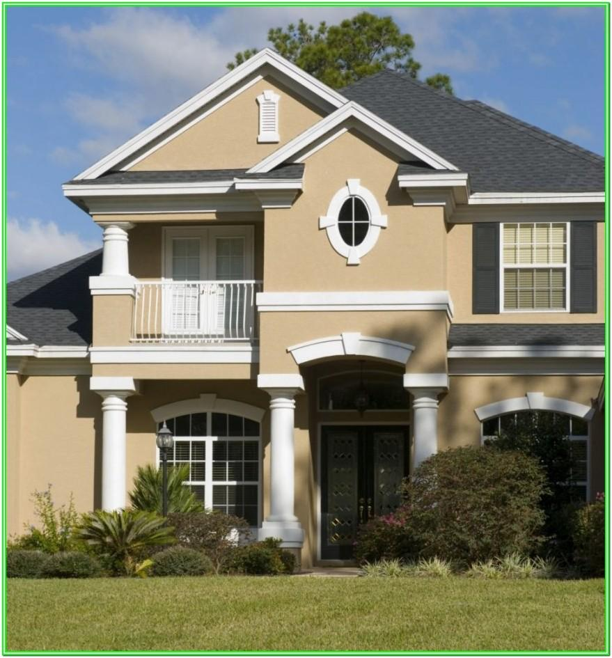 Best Exterior Paint Colour In India