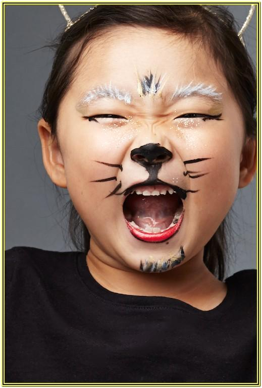 Cat Face Paint Ideas Halloween
