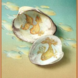 Clam Shell Painting Ideas